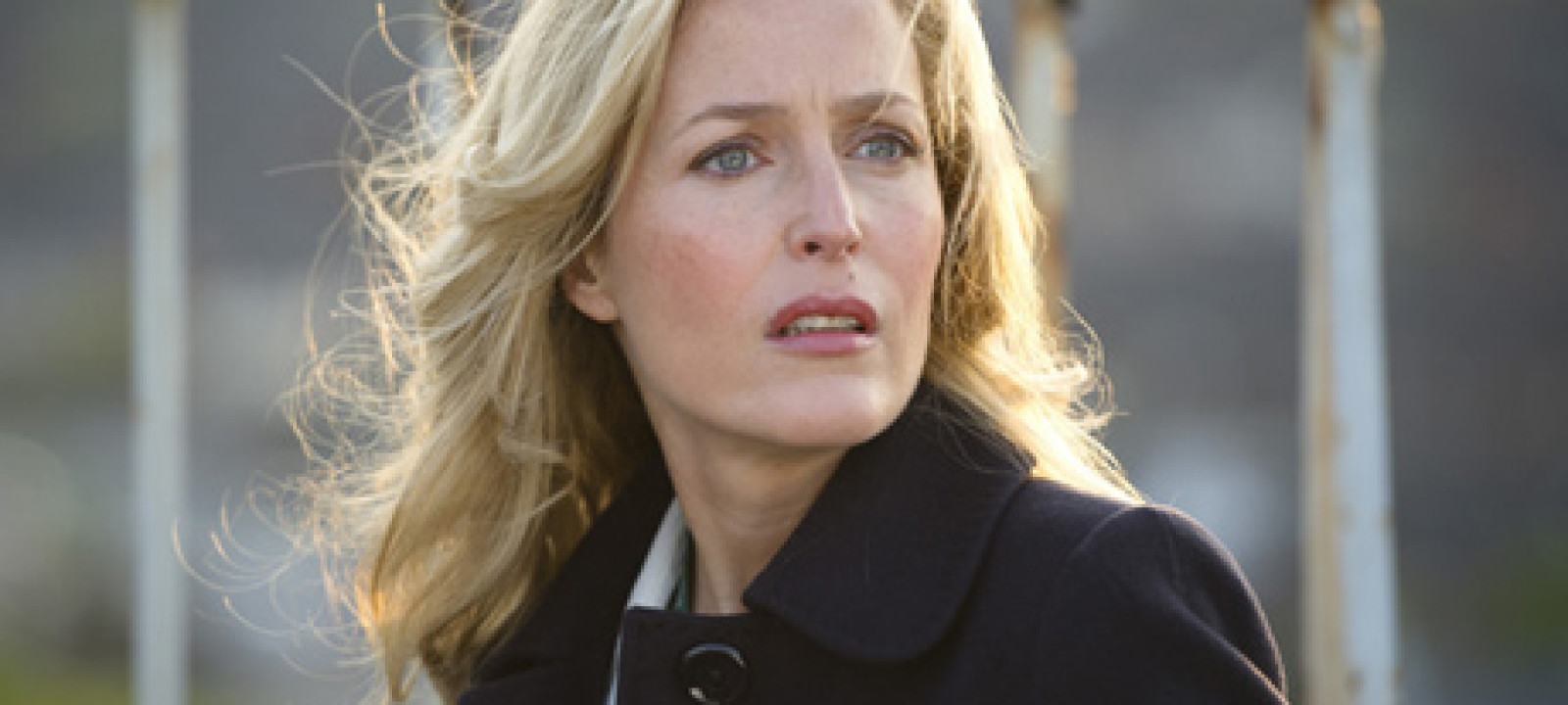 the fall gillian anderson review