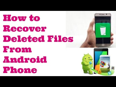 www recovering deleted files net review